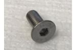 screw for door- and bonnet hinge M8x30 Bertone